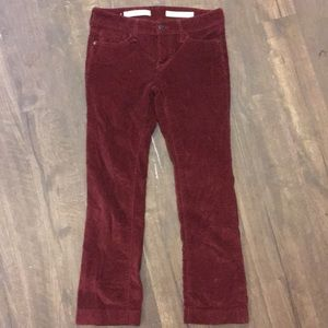 Pilcro and the Letterhead Stet Red Corduroy pants